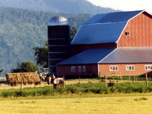Farm & Ranch Insurance Quote Chicago