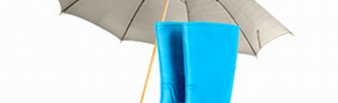 Flood Insurance Rockford